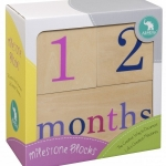 Milestone Blocks - Girl - Gifts + Toys (Creative)