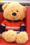 Zooty Bear with Orange Shirt - OUR BRANDS<br>(Cuties By Zootys)