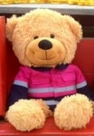 Zooty Bear with Pink Shirt - OUR BRANDS<br>(Cuties By Zootys)